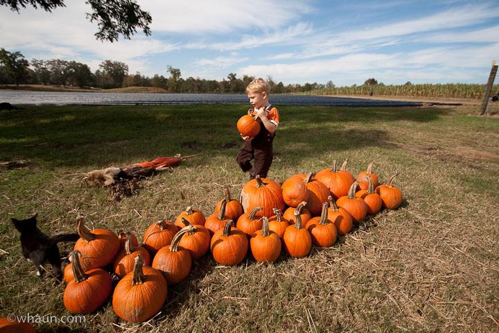 elliot-farms-pumpkin-patch-10.jpg