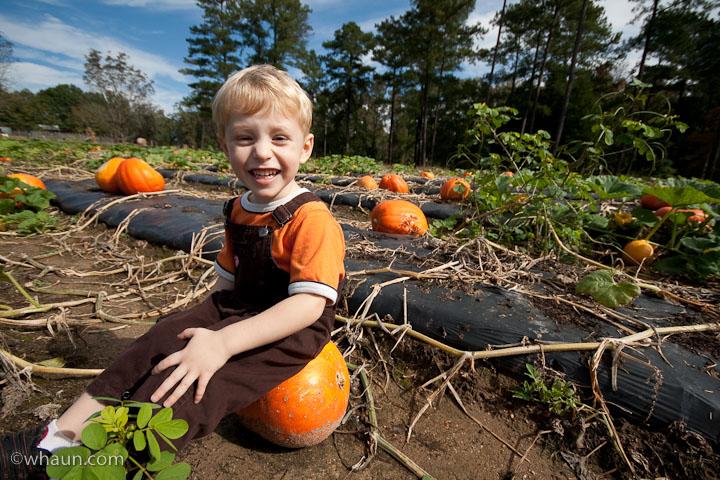 elliot-farms-pumpkin-patch-14.jpg