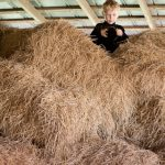 Fun in the hay!
