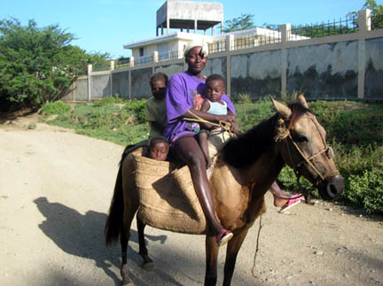 A few of the more wealthy families own a mule.