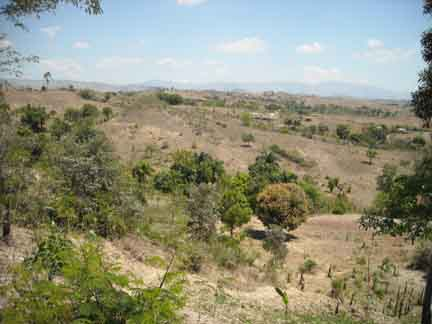 During the dry season (November through April), the land turns brown and sparse. Throughout Haiti, trees have been cut down to make charcoal for cooking.