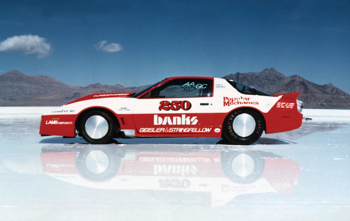 Firebird Salt 1986