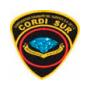 Casos De Exito ERP Cordi Sur