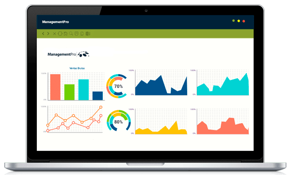 Business Intelligence de ManagementPro ERP