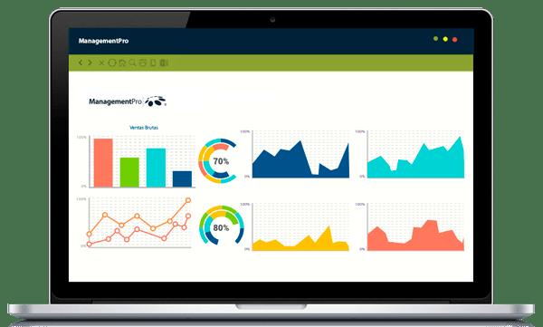Business Intelligence de ManagementPro ERP