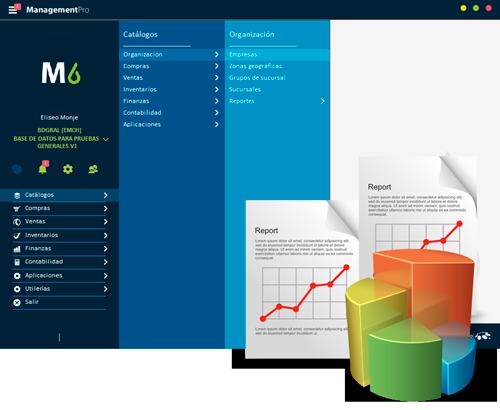 Reportes del Sistema ERP ManagementPro Versión 6