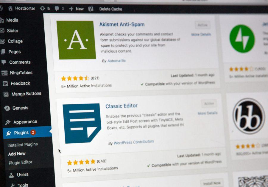 Best WordPress Courses