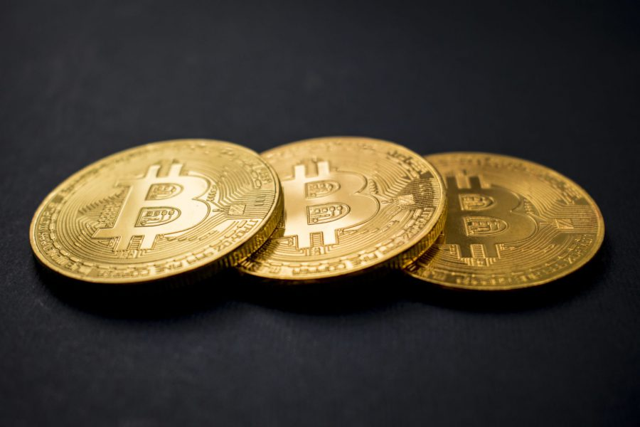 Bitcoins worth millions of cats online betting sites united states