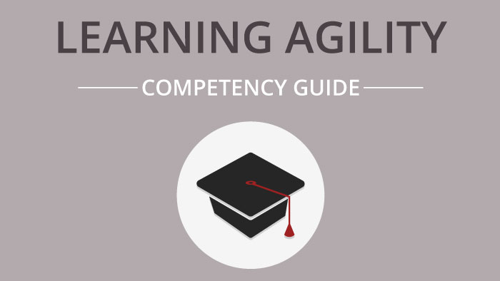 How-To Guide: Learning Agility