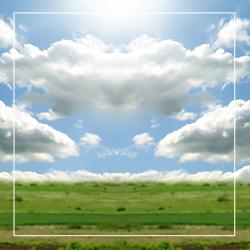 green_field