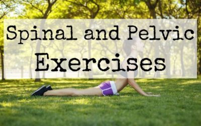 Spinal and Pelvic Exercises