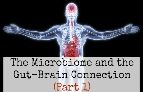 The Microbiome and the Gut-Brain Connection (Part 1)