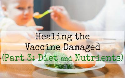 Healing the Vaccine Damaged (Part 3: Diet and Nutrients)