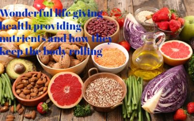 Nutrients in Food and their bodily purpose I (Phenols)
