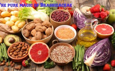 Nutrients in Food and their bodily purpose IV (Glucosinolates, Sulforaphane,Indole-3-Carbinol)