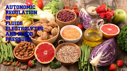 Nutrients in Food and their bodily purpose XII (Water IV- Blood pressure, Blood volume regulation