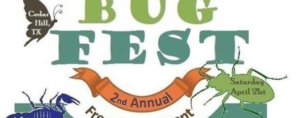 Bug Fest 2018