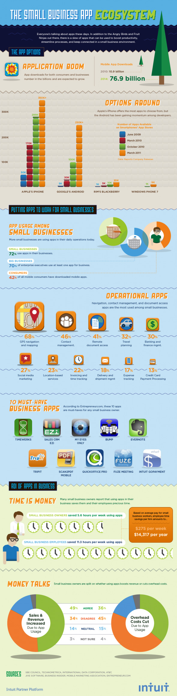 Infographic: Small Business AppNation