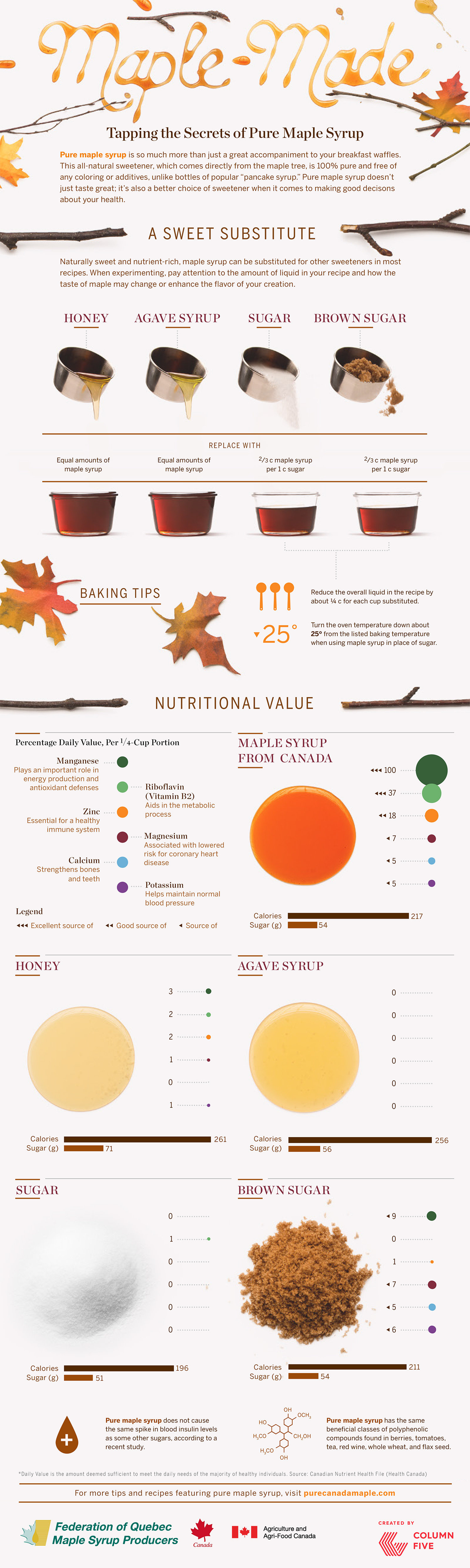 Maple-Made: Tapping the Secrets of Pure Maple Syrup