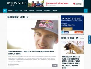 RSVLTS – Publication Website Design