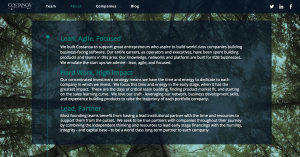 Costanoa Website Design 2