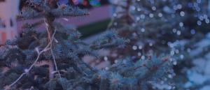 Christmas charts header