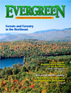 Cover of September 1998 Issue of Evergreen Magazine