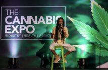 Tne cannabis