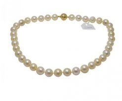Mikimoto Jewelry Princess 18k Yellow Gold Pearls Ladies Necklace, ABK1G1TV13 ABK1G1TV13