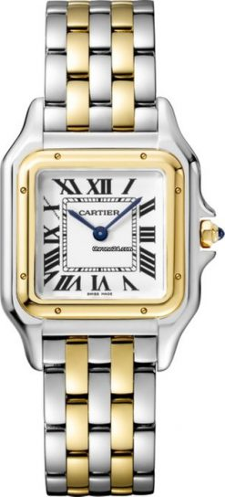 Cartier Panthère Stainless Steel & 18K Yellow Gold Ladies Watch W2PN0007