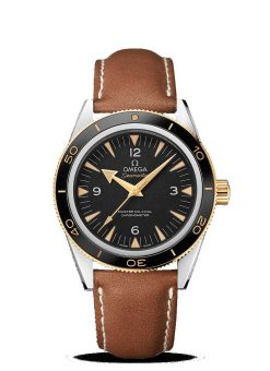 Omega Seamaster Aqua Terra Co-Axial Master Stainless Steel & 18K Yellow gold Men's… 233.22.41.21.01.001