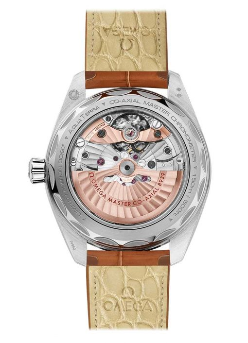 Omega Seamaster Aqua Terra Co-Axial Master GMT Worldtimer Edition Stainless Steel Men`s Watch, 220.93.43.22.99.001 3