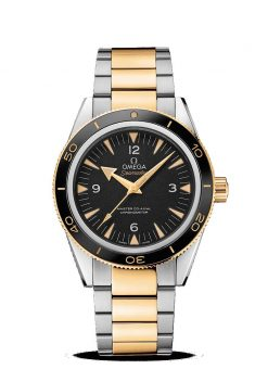 Omega Seamaster 300 Master Co-Axial Stainless Steel & 18K Yellow Gold Men's Watch 233.20.41.21.01.002