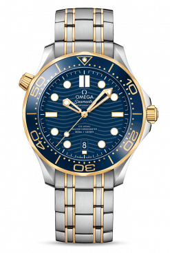 Omega Seamaster 300 Master Co-Axial Stainless Steel & 18K Yellow Gold 210.20.42.20.03.001