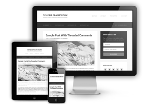 genesis 2 wordpress theme