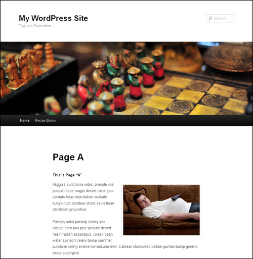 How To Make Any Page Of Your Choice Be The Home Page Of Your WordPress Site