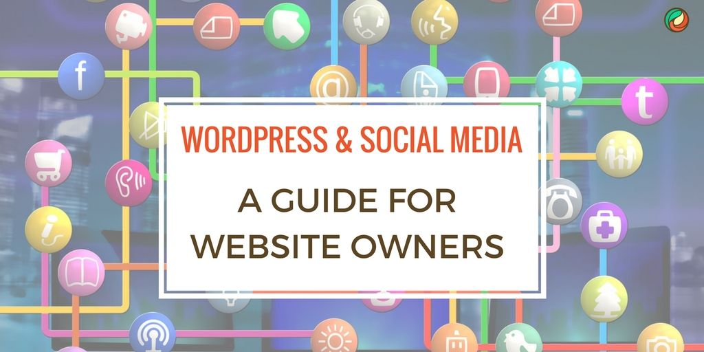 wordpress-social-media-guide-for-business-owners