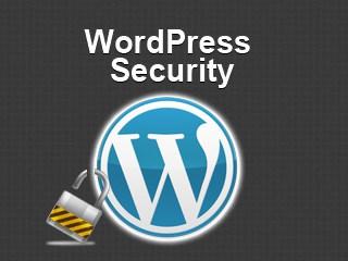 WordPress & Security Plugins plus Services