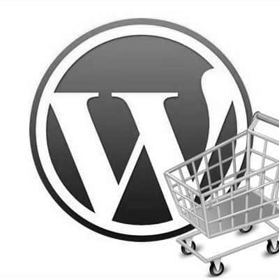 164 WP-Tonic: Differences Between an eCommerce Website vs Regular Website