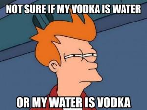Vodka Fry