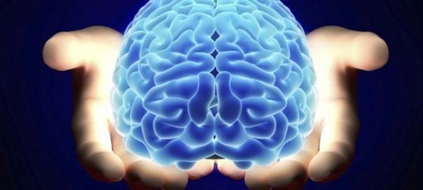 brain-study-jpe