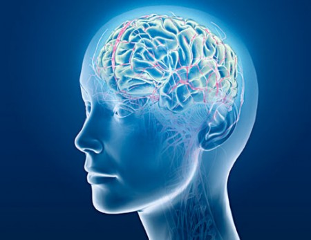 six-major-mental-disorders-tracked-to-same-brain-regions-treatments-may-be-effective-across-spectrum-jpg