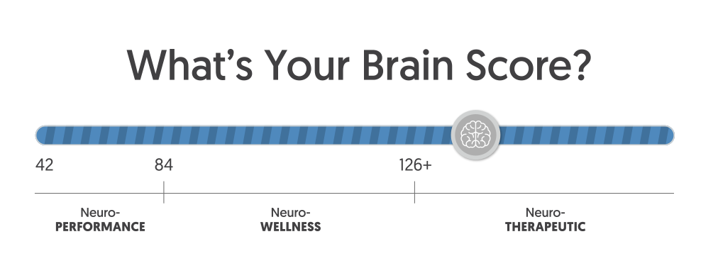Brain Score