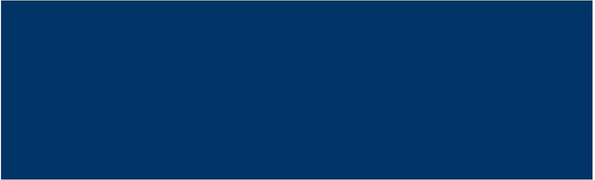 Bi Logo Blue 2021