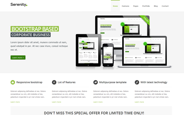 responsive business theme