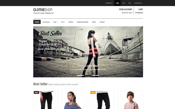 Best Responsive Bootstrap Themes