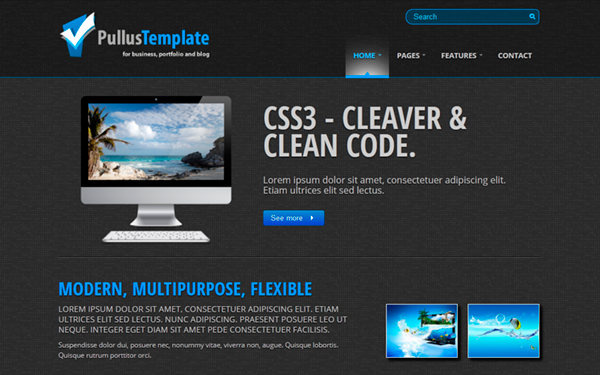 pullus template modern flexible selling for 15 00