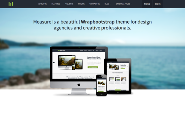 Measure Responsive Business Theme