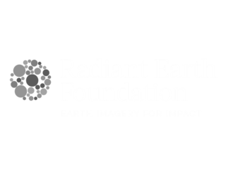 Radiant Earth Foundation
