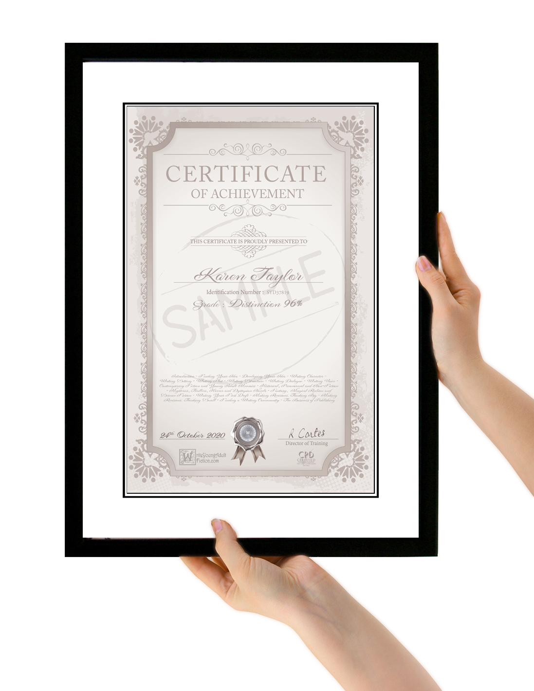 Certificate How To Write Young Adult Fiction Online Course Write